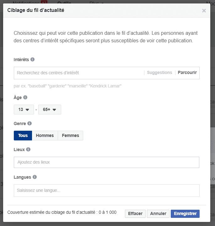 Options de ciblage du fil d'actualité Facebook.